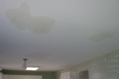 Ceiling Stains Before Nepean