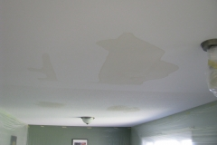 Ceiling Stains Before Ottawa