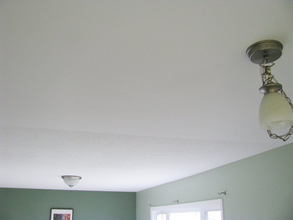 Ottawa Ceiling Stains Repaired and Painted After