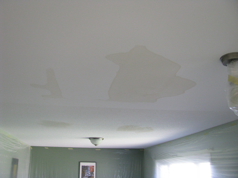 Ottawa Ceiling Stains Repaired and Painted Before